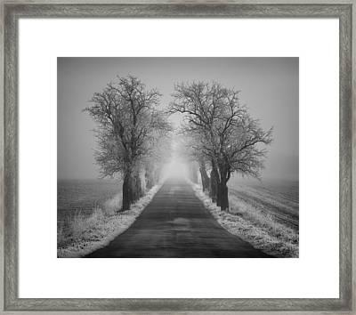 Winter Scene Framed Print by Jaromir Hron