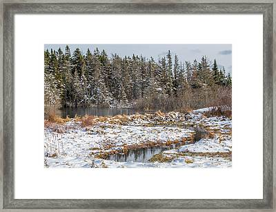 Winter Scene Maine  Framed Print