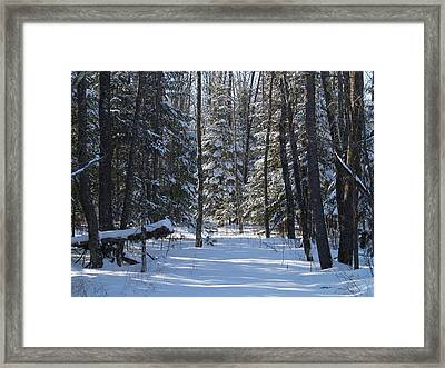 Winter Scene1 Framed Print by Susan Crossman Buscho
