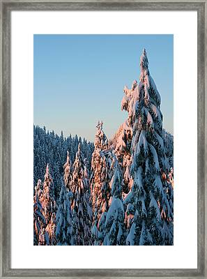 Winter Scenery Framed Print by Pierre Leclerc Photography