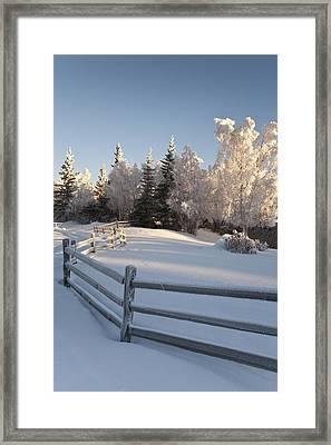 Winter Scenic Of Split Rail Fence And Framed Print