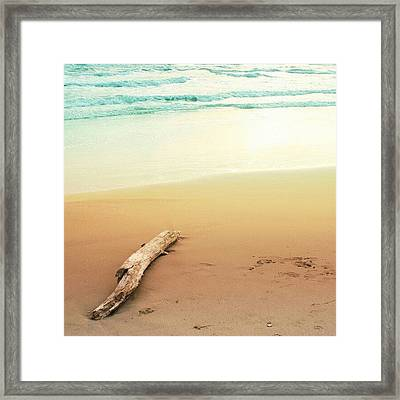 Winter Sea Framed Print