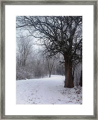 Framed Print featuring the photograph Winter Serenity by Teresa Schomig