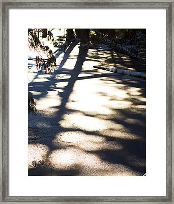Framed Print featuring the photograph Winter Shadows by Yulia Kazansky