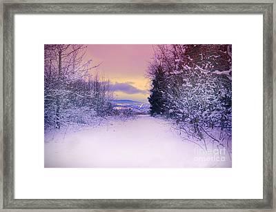 Winter Skies Framed Print by Tara Turner