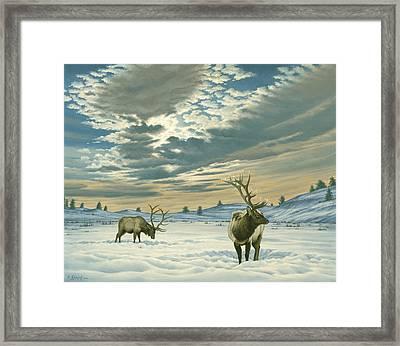 Winter Sky-elk   Framed Print by Paul Krapf