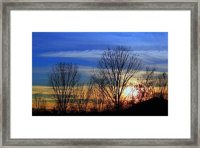 Winter Sky Framed Print by Rima Biswas