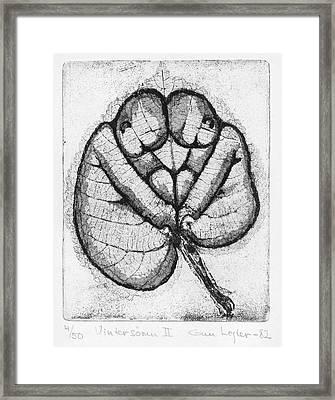 Winter Sleep Framed Print by Gun Legler