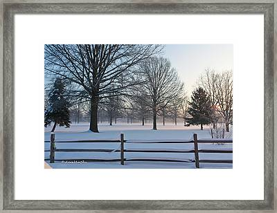 Winter Snow And Shadows Framed Print by Ann Murphy