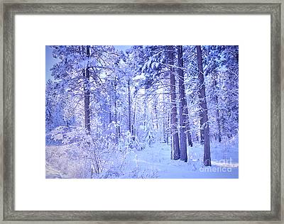 Winter Solace Framed Print by Tara Turner