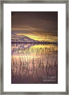 Winter Solstice 2 Framed Print