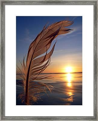Winter Solstice 2011 Framed Print