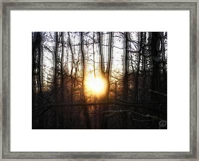 Winter Solstice Framed Print by Gun Legler