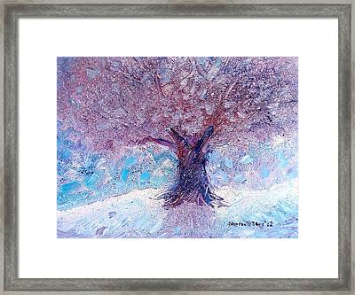 Winter Solstice Framed Print by Shana Rowe Jackson