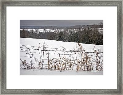 Winter Squall Panorama Framed Print by John Stephens