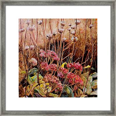 Winter Stalk Framed Print
