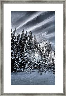 Winter Star Framed Print