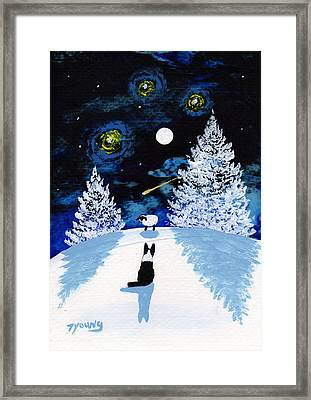 Winter Star Framed Print by Todd Young