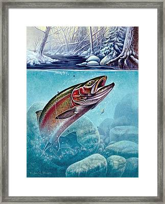 Winter Steelhead Framed Print by Jon Q Wright