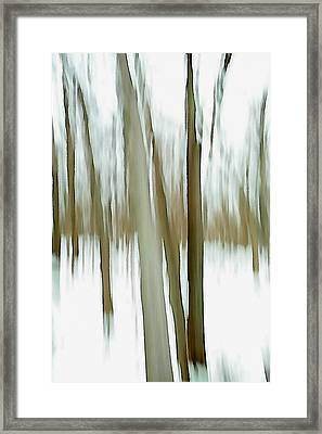 Framed Print featuring the photograph Winter by Steven Huszar