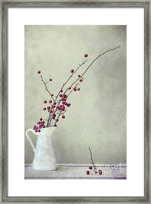 Winter Still Life Framed Print by Priska Wettstein