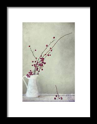 Red Berry Framed Prints