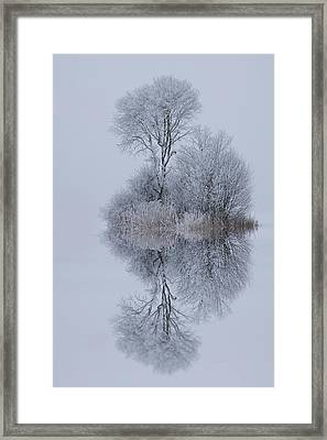 Winter Stillness Framed Print