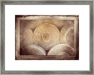 Winter Storehouse Framed Print by Carolyn Marshall
