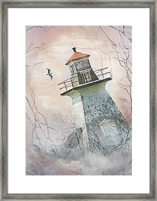 Winter Storm  Framed Print
