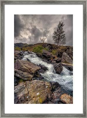 Winter Stream Framed Print by Adrian Evans