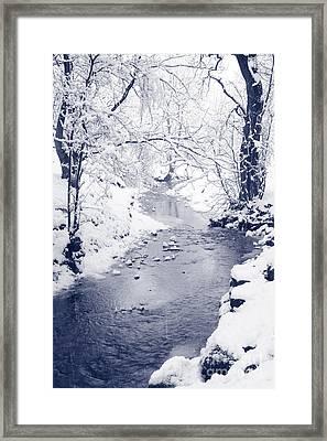 Framed Print featuring the photograph Winter Stream by Liz Leyden