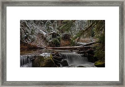 Winter Stream Framed Print by Mike Reid