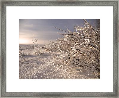 Winter Sun ... Framed Print by Juergen Weiss