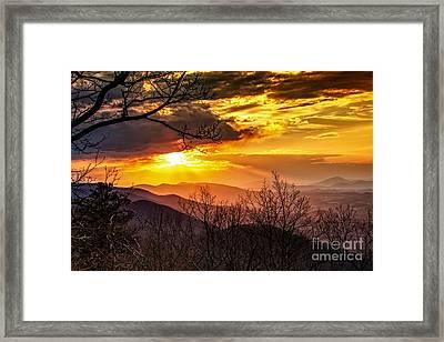 Winter Sun Framed Print by Mark East