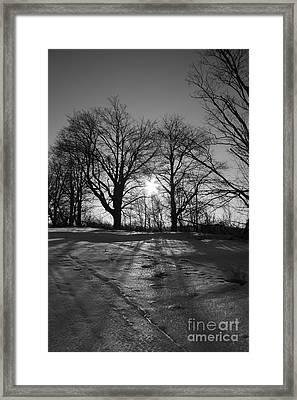 Winter Sun  Framed Print by Simon Jones