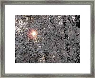 Winter Sunrise Framed Print by Greg Simmons