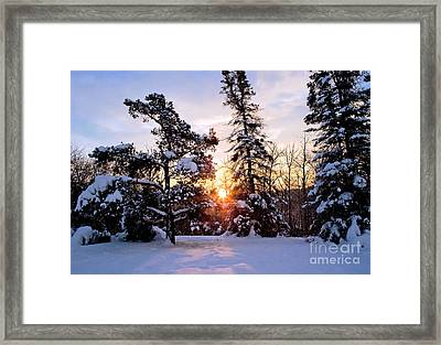 Winter Sunrise Framed Print by Terry Elniski