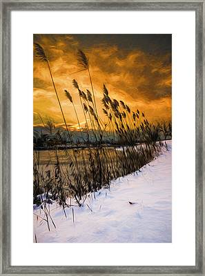Winter Sunrise Through The Reeds - Artistic Framed Print
