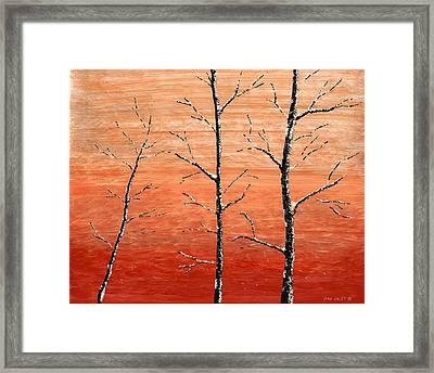 Winter Sunset Framed Print by Dan Haley