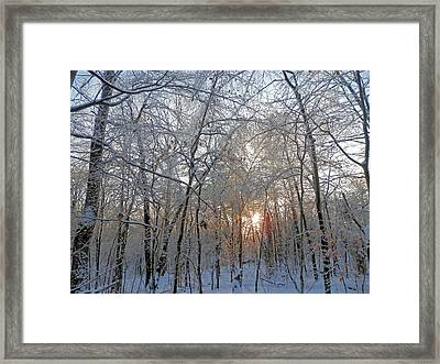 Winter Sunset Framed Print by Pema Hou
