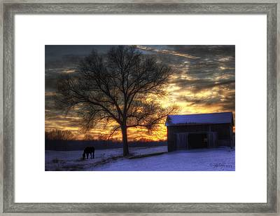 Winter Sunset Framed Print by Skip Tribby