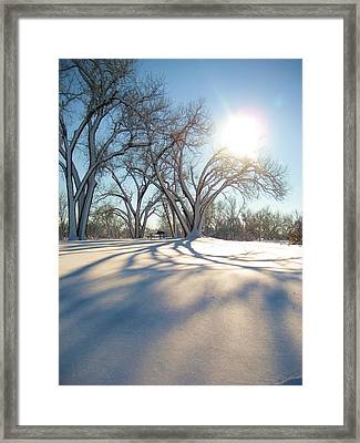 Framed Print featuring the photograph Winter Sunshine by Alicia Knust