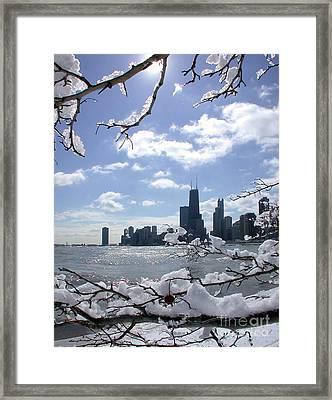 Winter Sunshine Framed Print
