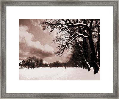 Winter Tale Framed Print by Nina Ficur Feenan