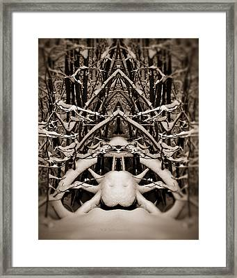 Framed Print featuring the photograph Winter Temple by WB Johnston