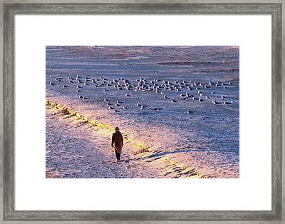 Framed Print featuring the photograph Winter Time At The Beach by Cynthia Guinn