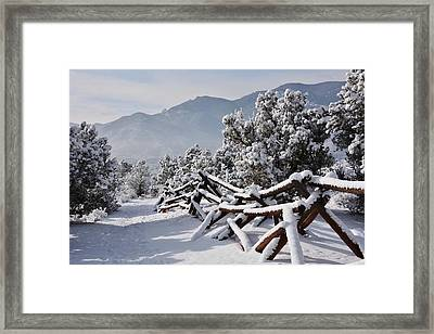 Winter Trail Beckons Framed Print by Diane Alexander