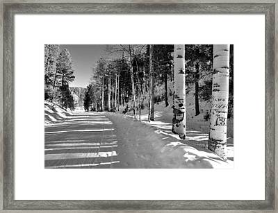 Winter Tranquility Framed Print
