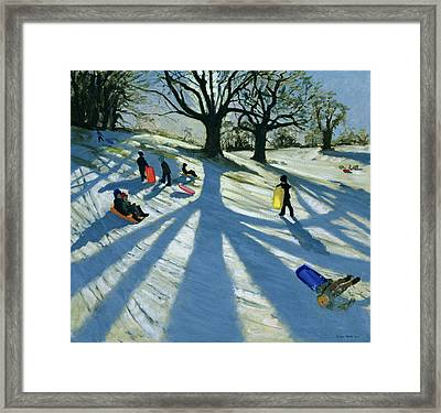 Winter Tree Framed Print by Andrew Macara