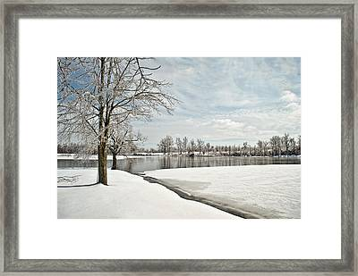 Winter Tree At The Park 2 Framed Print